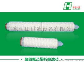聚四 乙烯(PTFE)折叠滤芯,各种规格齐全