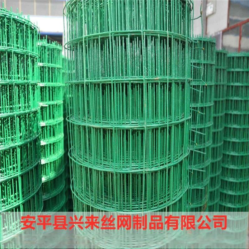 綠色鐵絲網 漁業養殖網 圍欄網生產廠家