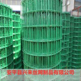 绿色铁丝网 渔业养殖网 围栏网生产厂家