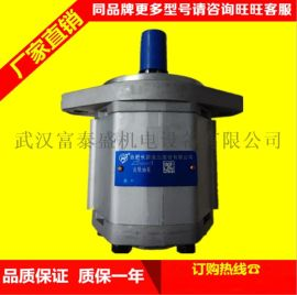 合肥长源液压齿轮泵侧进后出齿轮泵CBW/FA-E425-花左(法兰)齿轮泵
