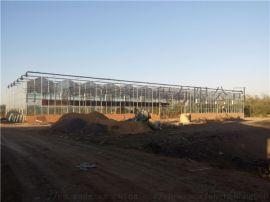 湖北玻璃温室建设,盛鸿一站式建设