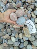 山東承託層用鵝卵石   污水處理用礫石