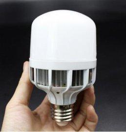 LED大功率平头鸟笼球泡 led球泡灯节能塑料 LED新款节能球泡