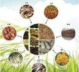 綜合性能強大的生物質燃料