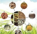 综合性能强大的生物质燃料