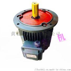 YLT200L2-6/22KW防水电机,V1倒装