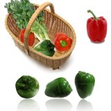 便捷塑料果蔬儲藏盒 食物收納盒 彩色塑料蔬菜形保鮮盒