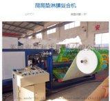 山东EPE金利达珍珠棉淋膜机设备厂家
