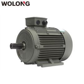卧龙電機YE3系列  效率三相异步電動機