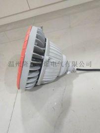 BLEDD5-HJ40W防爆高效节能LED应急灯