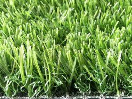 人造草坪幼儿园  人工草假塑料草坪