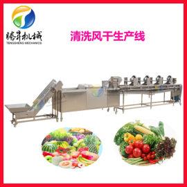 不锈钢果蔬清洗流水线 腾昇定制蔬菜清洗流水线