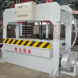 青岛国森品牌压力160T碳纤维板生产线设备