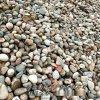 本格供应鹅卵石.变压器专用卵石.园林铺装卵石