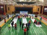 2022冬奥会陆地冰壶球,仿真冰冰场建设施工