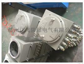 BXJ52-20/20防爆端子分线箱