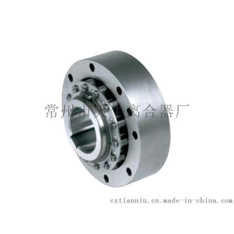 RSCI 逆止器,RSCI 180-300逆止器
