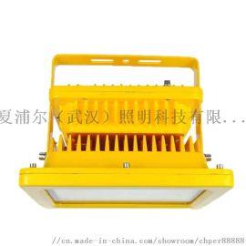 BYC6200_110W防爆灯防爆高效节能道路灯