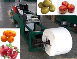 全自动柑橘柠檬果袋机猕猴桃纸袋机/毛桃套袋制袋机/不知火袋机产品参数