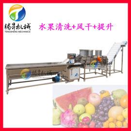 定制果蔬清洗生产线 奇异果/苹果清洗机 风干线