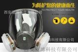 3M全面型防护面罩 咨询15591059401
