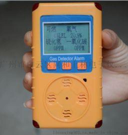 二合一气体检测仪 (硫化氢+氨气)检测仪