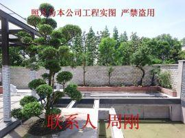 苏州私家园林、私家庭院绿化景观工程、苏州花园设计、苏州别墅绿化苗木设计