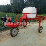 自走式10马力柴油动力打药机定制中原地区小麦玉米打药机可施肥打