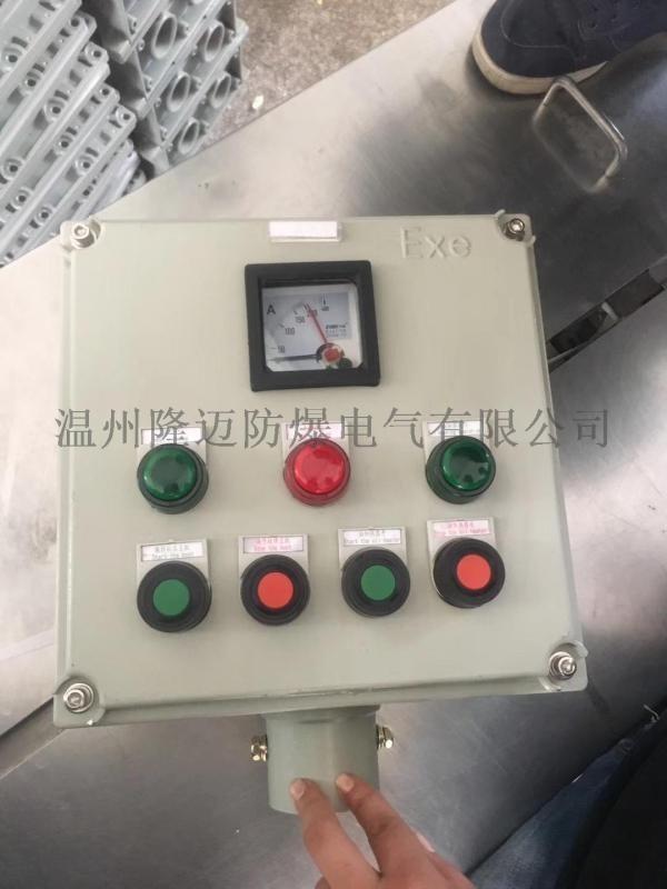 防爆操作柱 LBZ-B2D2G