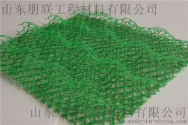 三维植被网/三维植被网厂家/三维复合排水网