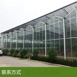 江苏连栋玻璃大棚建设厂家 智能玻璃温室采用荷兰技术