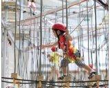 历奇探险-成人儿童绳网-天空步道,品质好价格优