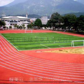 廠家銷售人造草坪假草皮幼兒園模擬草坪塑料人工草皮