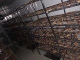 大型鳄鱼肉烘干机中央控制系统完美