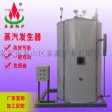 燃氣蒸汽發生器,全自動蒸汽發生器,免檢蒸汽發生器
