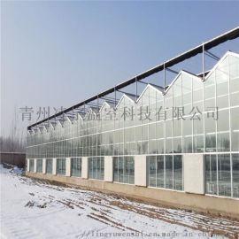 阳光板温室 连栋温室 温室承建 质量保障