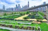 都市農夫校園勞動教育實踐基地_學校植物園建設專業綠化設計公司