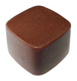 生产线专用PC巧克力模具