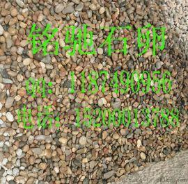 鹅卵石 染色鹅卵石 天然鹅卵石 鹅卵石生产厂家 红色鹅卵石 绿色鹅卵石