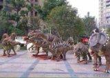 国内大中小型恐龙展会资源公司
