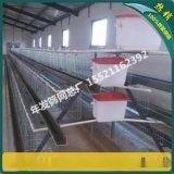 鸡笼子 养殖 蛋鸡 三层24位镀锌大型养殖场蛋鸡笼子价格 出口标准