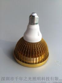 LED帕灯 室内照明**