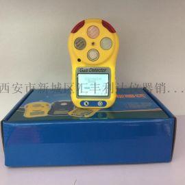 西安手持式一氧化碳气体检测仪