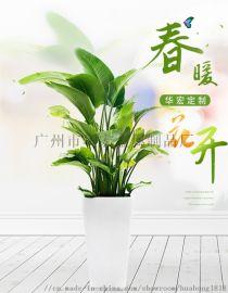 广州厂家直销户外创意玻璃钢花盆