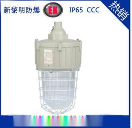 新黎明CCD92防爆照明灯,250W金卤灯,防爆节能灯