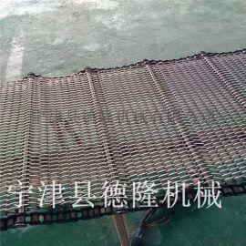 德隆DL-PJWD928不锈钢网带