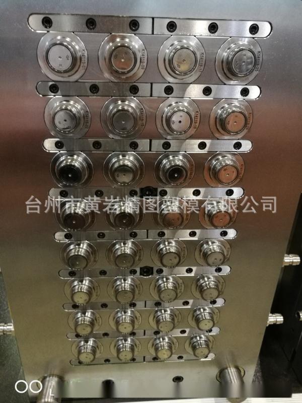 PET针阀式管坯模具 马达脱盖子模具 小胶口模具