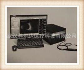 眼科AB超 SW-2100眼科A/B超声诊断仪