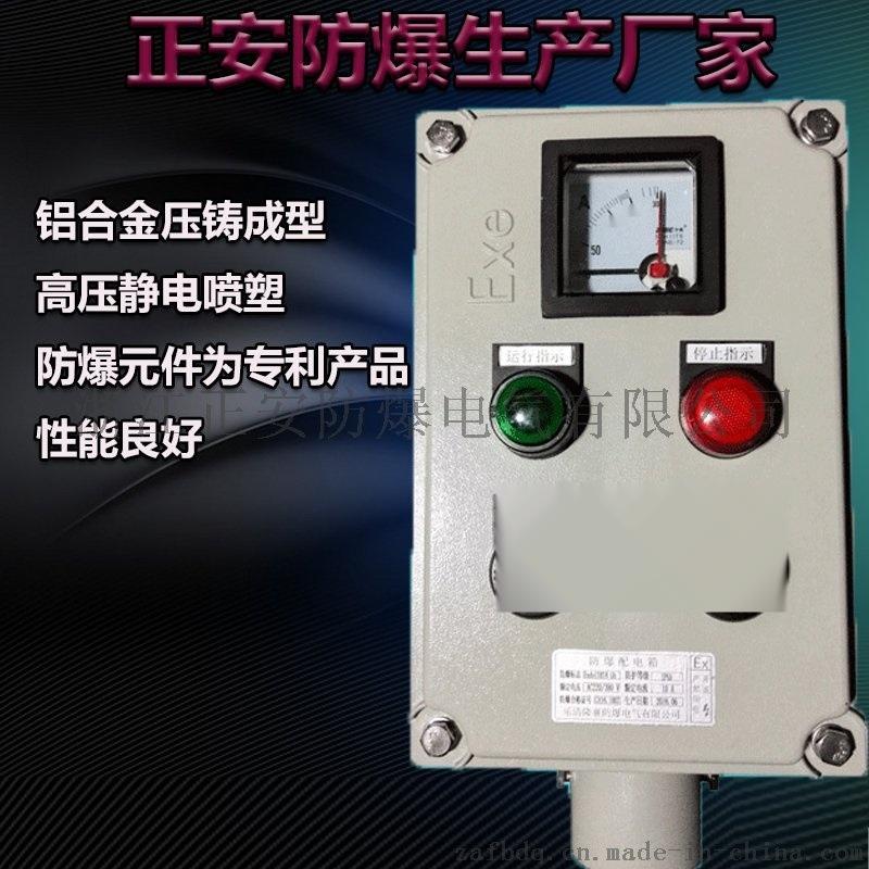 防爆操作柱远程控制非标定制挂式/立式防爆防腐仪表箱