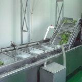 土特產清洗機農作物清洗機大棗翻浪清洗機